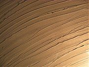 Текстура декоративной фактурной штукатурки